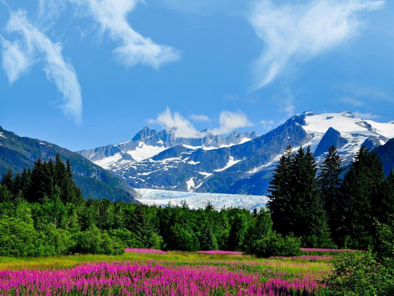 Freshness of Nature in Alaska