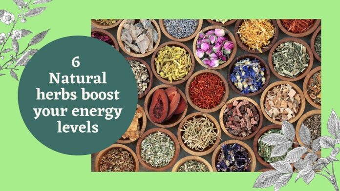6 Natural Herbs Boost Your Energy Levels