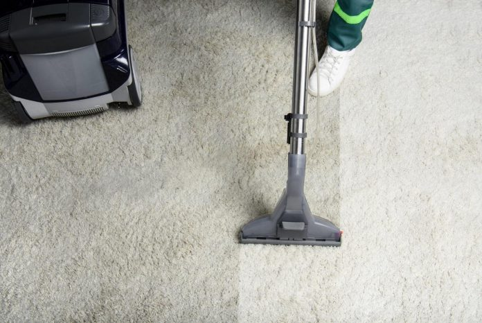 An Expert's Guide to Removing Pet Stains From Carpet