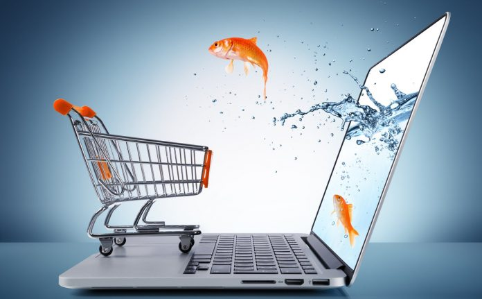 Understanding the Complex SEO Challenges Faced by an E-commerce Website
