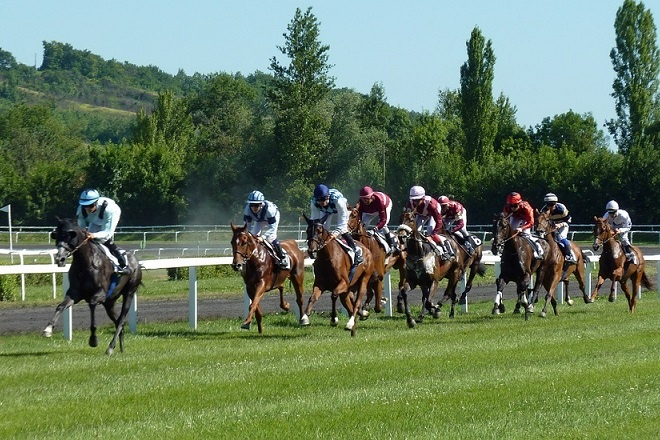 Horse Racing an Exciting Sport