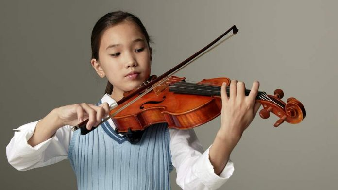 Features Of The Violin