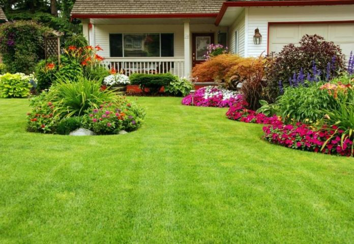 How to Get a Greener Lawn A Guide for Homeowners