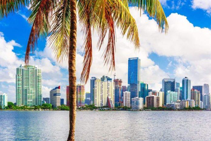 Real Estate Agent Miami