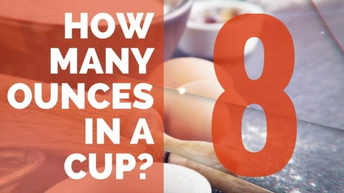 How Many Ounces in a Cup