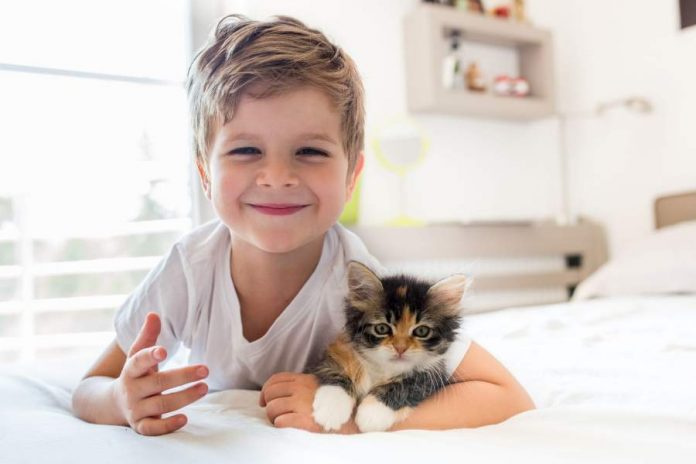 How to Keep Your Kids and Pets Out of Certain Rooms