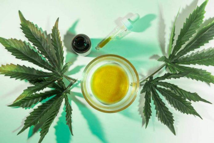 Where is Marijuana Legal A Guide to Marijuana Legalization