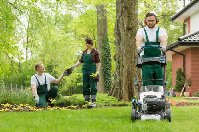 Top Reasons You Should Hire Professional Gardening Services