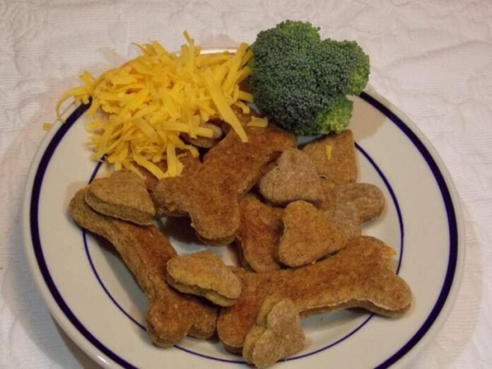 How Much Broccoli Can Dogs Eat