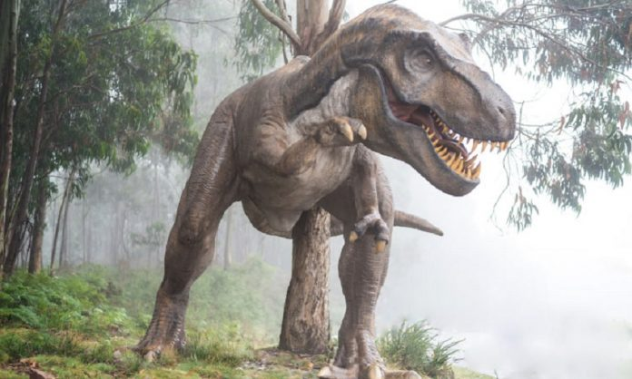 https://www.apzomedia.com/wp-content/uploads/2021/08/What-dinosaur-has-500-teeth-696x418.jpg