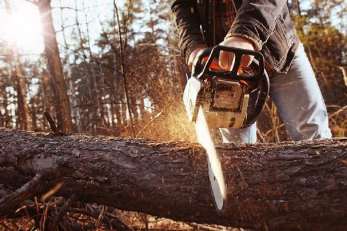 Why Were Chainsaws Invented